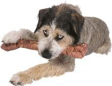 Fütterung und Ernährung - Hund
